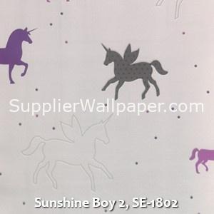 Sunshine Boy 2, SE-1802