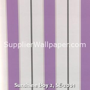 Sunshine Boy 2, SE-2001