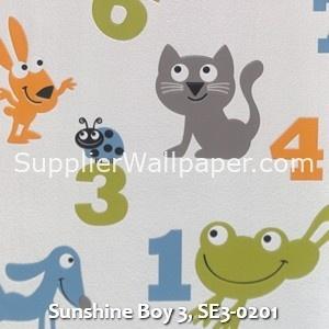 Sunshine Boy 3, SE3-0201
