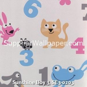 Sunshine Boy 3, SE3-0203