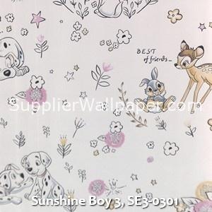 Sunshine Boy 3, SE3-0301
