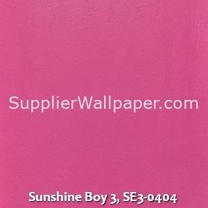 Sunshine Boy 3, SE3-0404