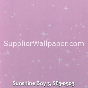 Sunshine Boy 3, SE3-0503