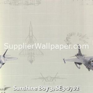 Sunshine Boy 3, SE3-0702