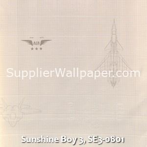 Sunshine Boy 3, SE3-0801