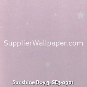 Sunshine Boy 3, SE3-0901