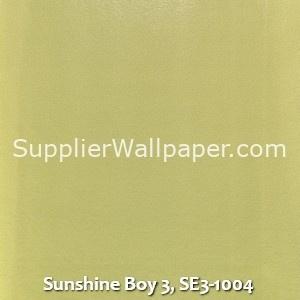 Sunshine Boy 3, SE3-1004