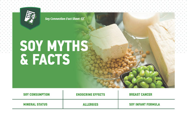 Soy Myths and Facts