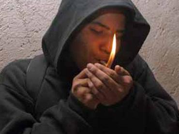 Imagen tomada de www.informador.com.mx/