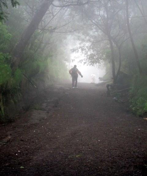 Hiking up to see Kawah Ijen