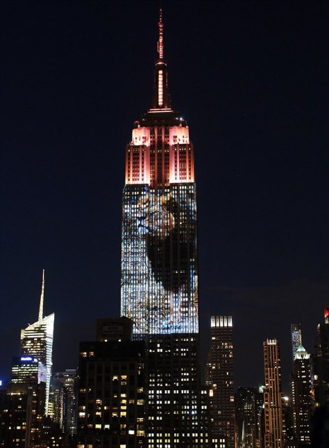 Cecil the Lion projection at the Empire State Building 13