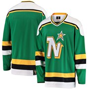 Minnesota North Stars Fanatics Branded Premier Breakaway Heritage Blank Jersey - Green