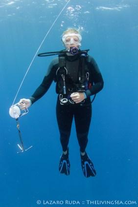 Our trusty dive guide, Allison Knox.