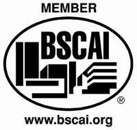 bscai_logo