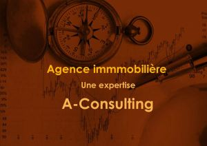 Expertise agence immoblière