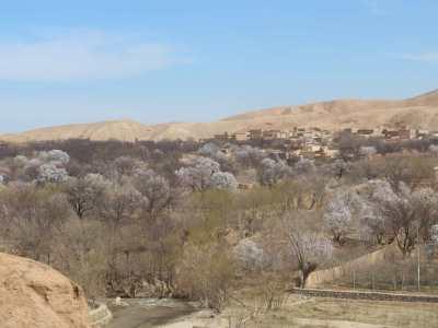 Permalink to: An Afghan girl ran away from Ghzani war killed in Kabul explosion