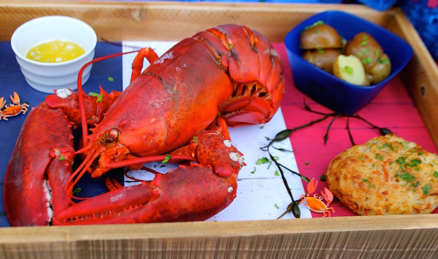 how to prepare cooked lobster