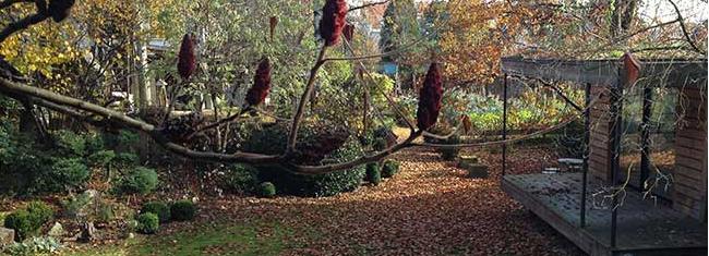 L'agora à travers les saisons : l'automne
