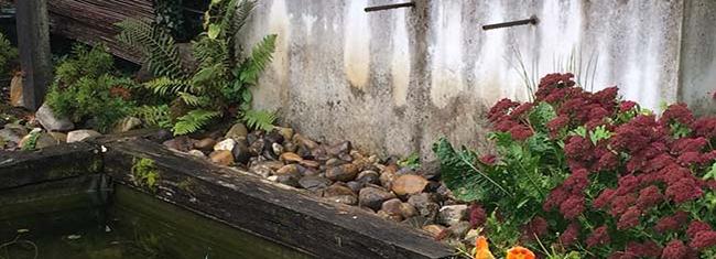 Vue sur les fontaines du grand bassin