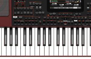 beginner keyboard, arranger keyboard