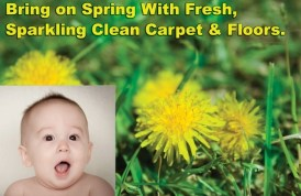 Spring Cleaning Glen Carbon IL