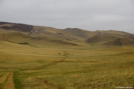 Mongolie, Vallée d'Orkhon