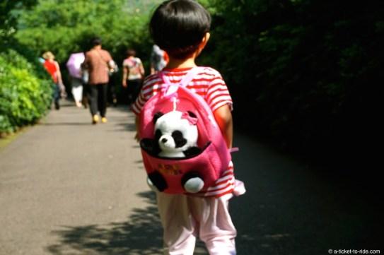Chine, Chengdu, centre de recherche et d'élevage de pandas géants