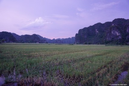 Vietnam, Tam Coc, rizières