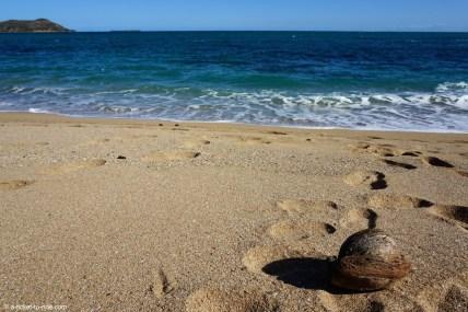 Nouvelle-Calédonie, baie des tortues