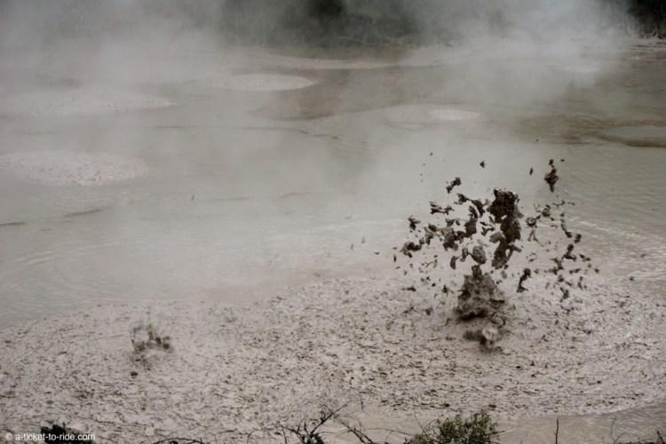 Nouvelle-Zélande, Wai-o-tapu, bulles de boue