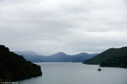 Nouvelle-Zélande, point de vue depuis Picton