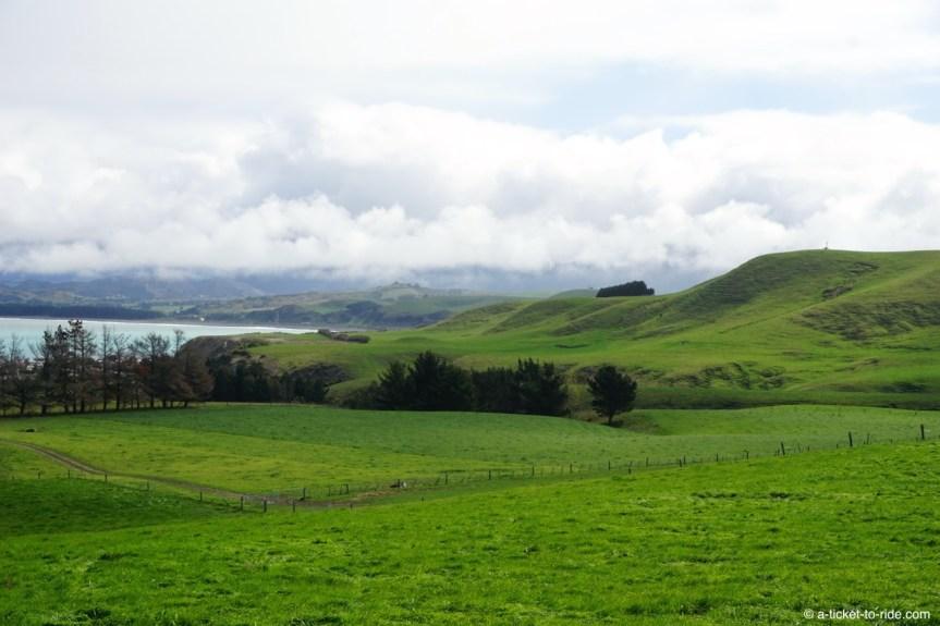 Nouvelle-Zélande, Kaikoura