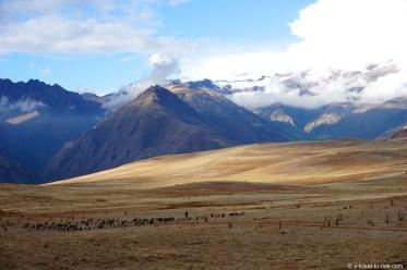 Pérou, Vallée sacrée, Maras