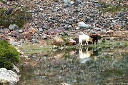 Pérou, trek du Salkantay, lac humantay