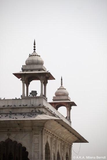 Inde, Delhi