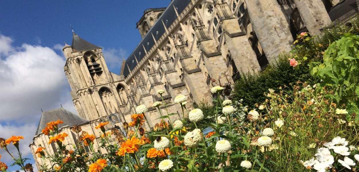 Bourges, cathédrale fleurie