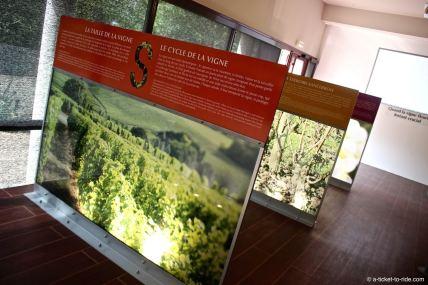 Maison de Sancerre, comprendre les vignes