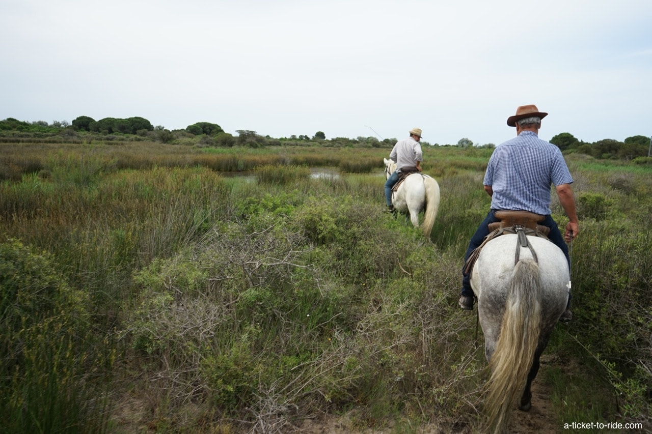 Camargue, découverte à cheval