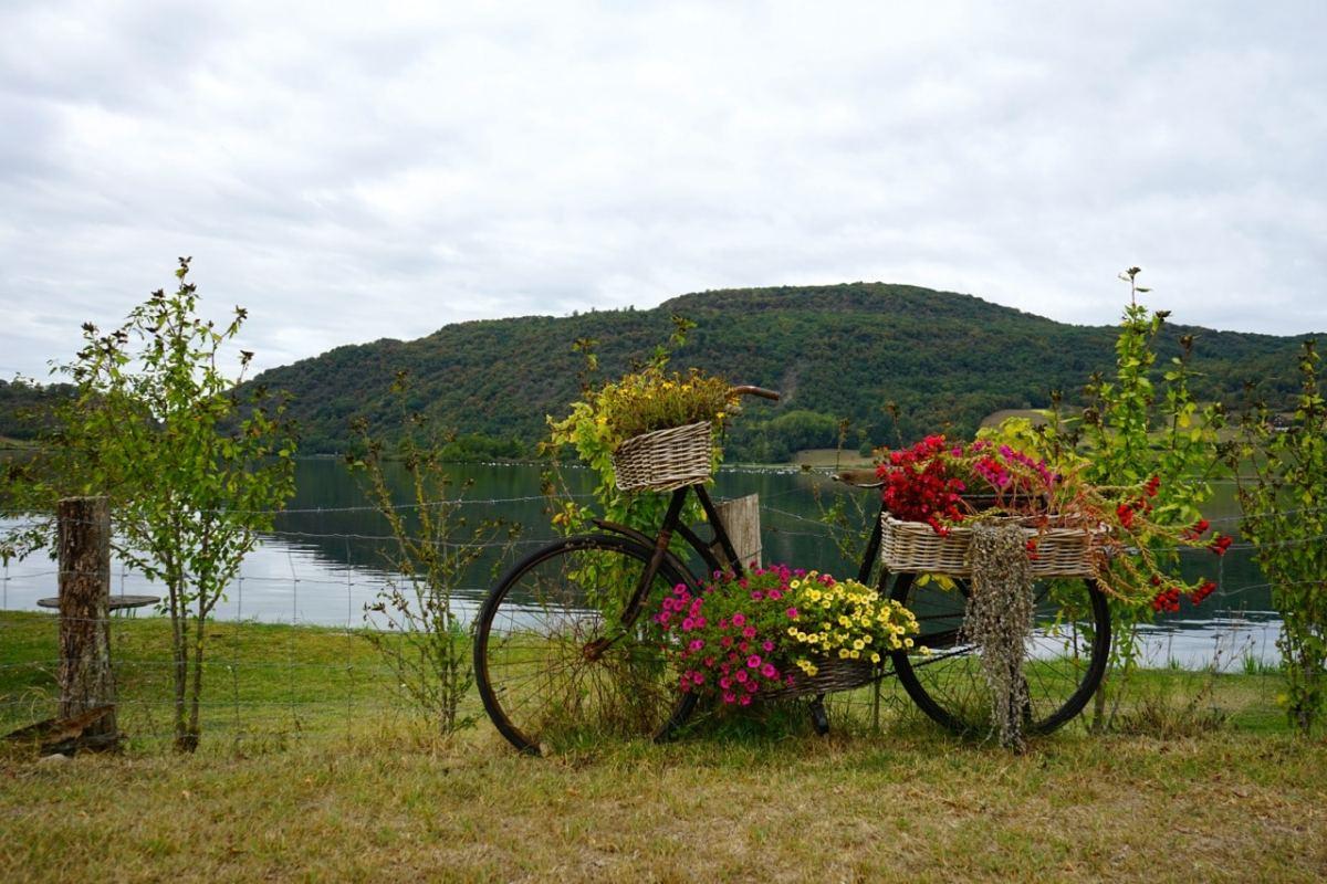 Savoie, via rhona