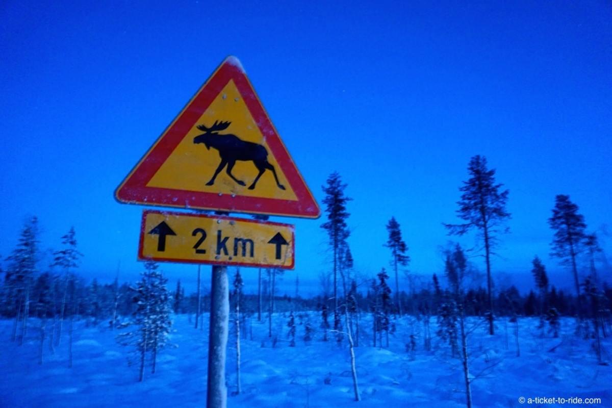 Laponie, panneau signalisation renne