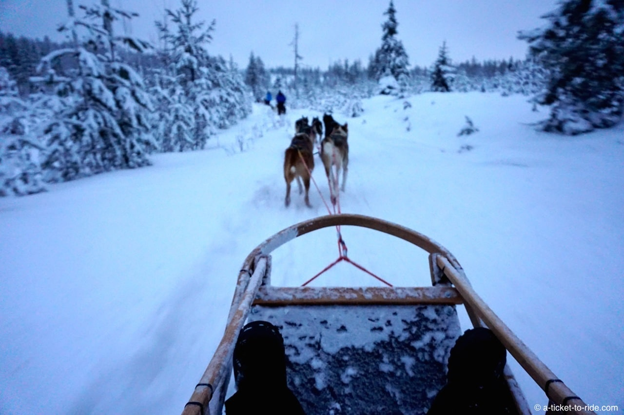 Laponie finlandaise, traineau