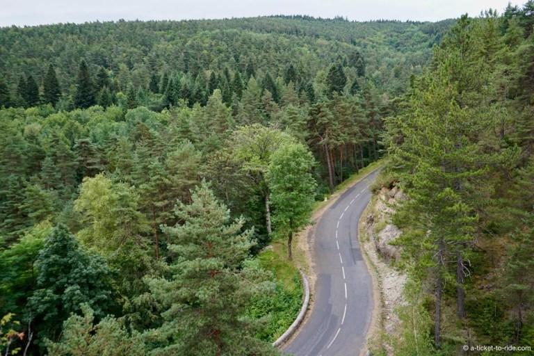 Forêt Aigoual