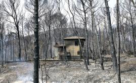 incendio de Llutxent (1)