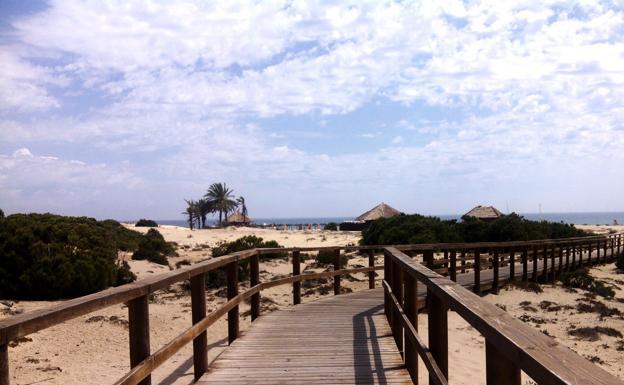 Playa El Carabassí (Elche)