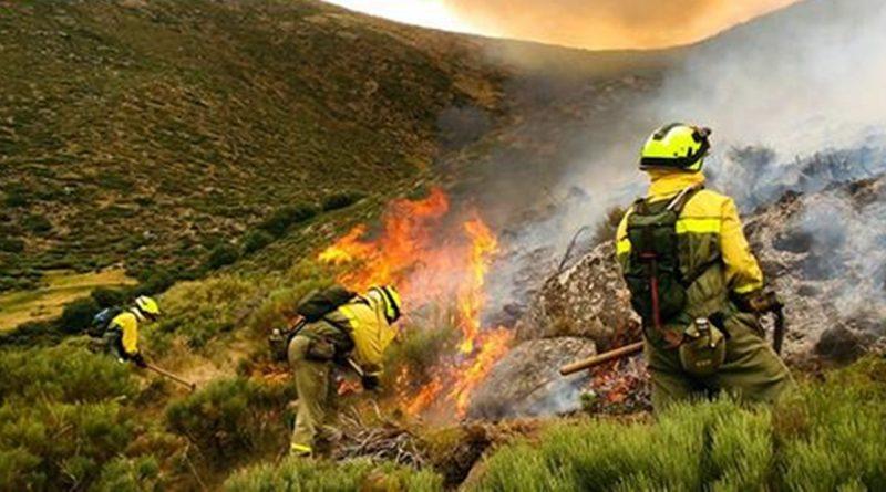 El Ministerio de Agricultura, Pesca y Alimentación mantiene un amplio dispositivo de extinción para sofocar el incendio en Gran Canaria
