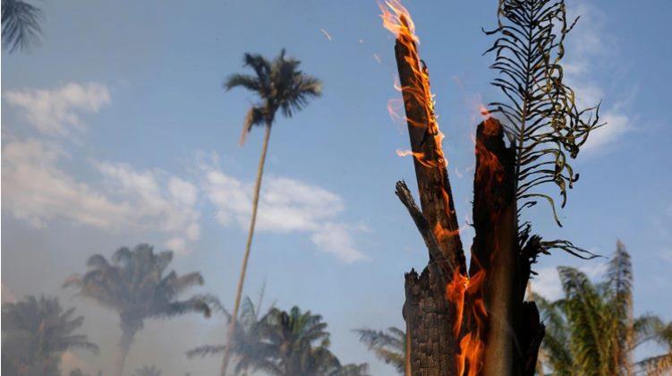 El presidente de Brasil insinuó que las ONG están detrás del número de incendios en la Amazonía (Foto: Reuters)