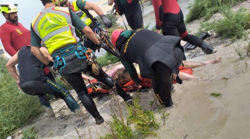 Los solidarios ilicitanos  aficionados al 4×4 que colaboraron en los rescates durante la DANA