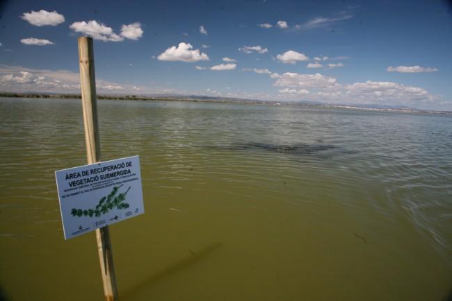 Los regantes del Júcar se niegan a aportar 70 hectómetros cúbicos anuales más de agua a l'Albufera