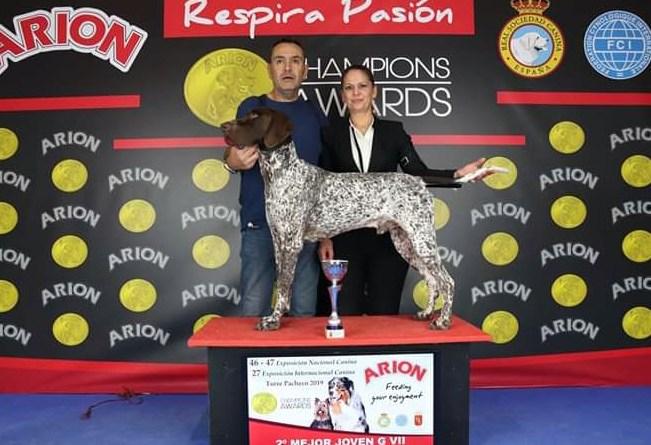 El perro más bello de España es de Almoradí