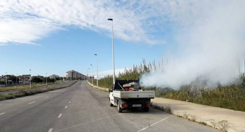 Fumigaciones 1